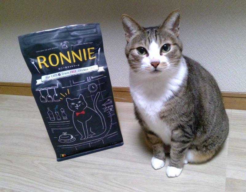 ロニーキャットフードと愛猫