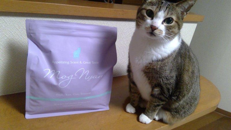 モグニャンのパッケージと愛猫