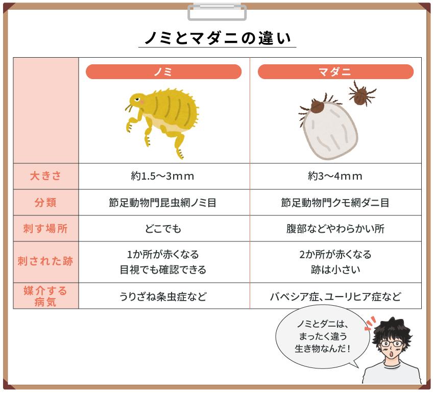【ノミとマダニの違い】