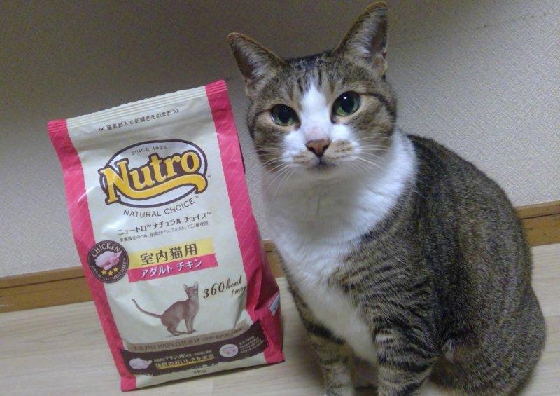 ニュートロナチュラルチョイスの成猫用のアダルトチキン